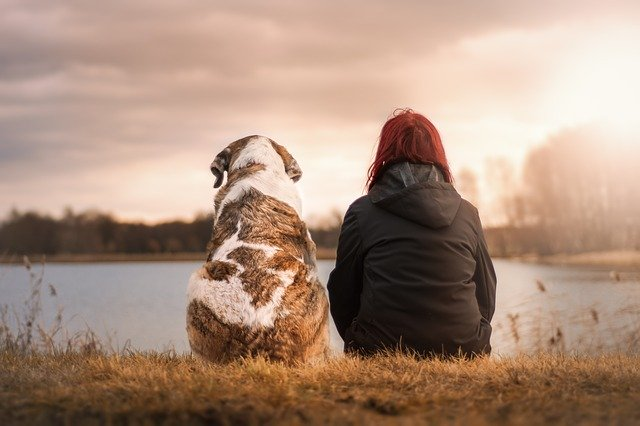 Dog and woman watching sunset